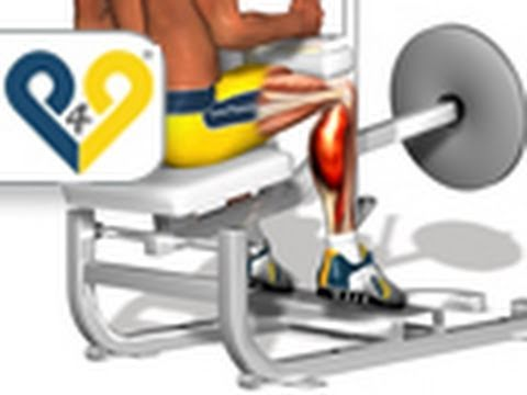 Seated Calf Raises with Machine (calf exercise) Image 1