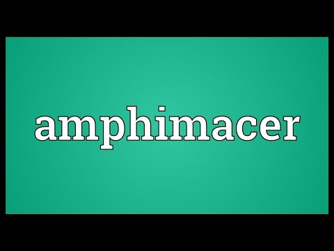 Header of amphimacer