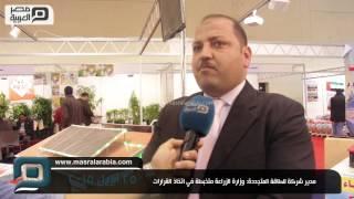 مصر العربية | مدير شركة للطاقة المتجددة: وزارة الزراعة متخبطة في اتخاذ القرارات