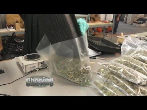 Philly To Decriminalize Marijuana Possession & Use