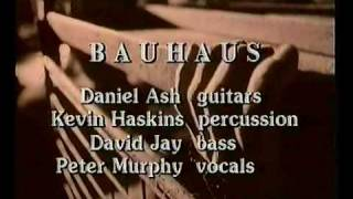 Bauhaus - The Sanity Assassin