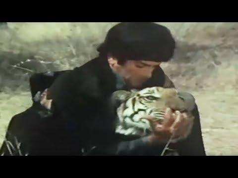 Shashi Kapoor Rakhee Nirupa Roy Jaanwar Aur Insaan - Scene 1515...