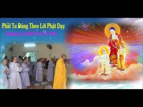 Phải Tu Đúng Như Lời Phật Dạy
