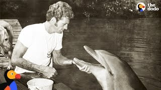 Former Dolphin Hunter Devotes His Life To Saving Dolphins | The Dodo