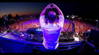 Armin van Buuren feat If you should go