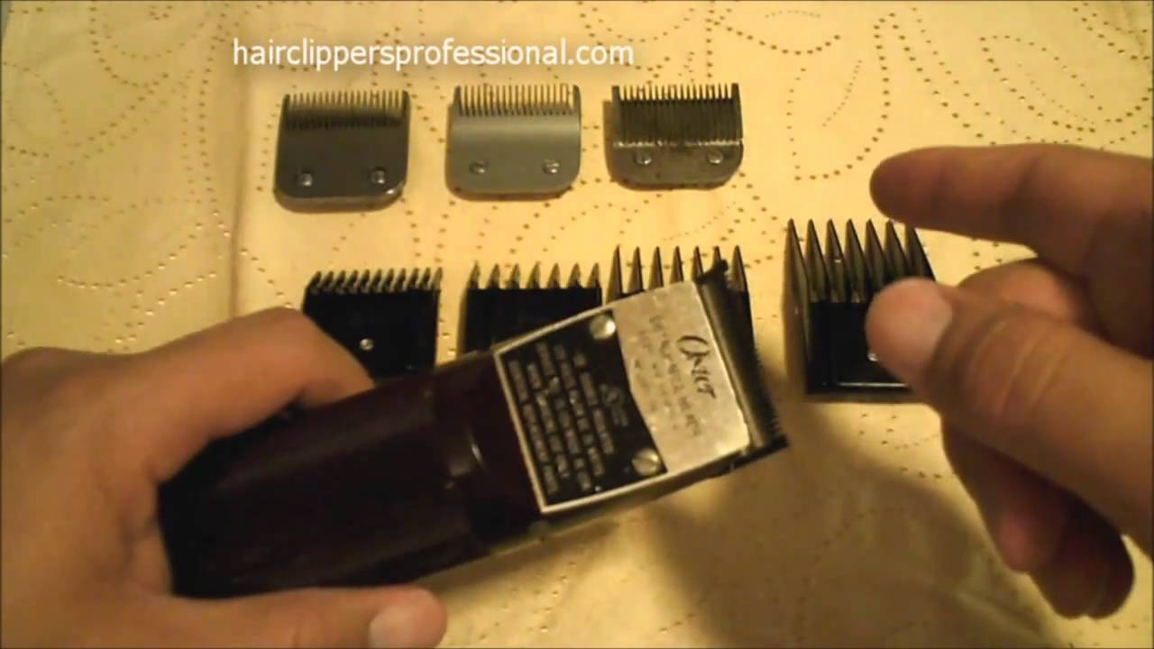 oster clippers classic  hair clipper review youtube