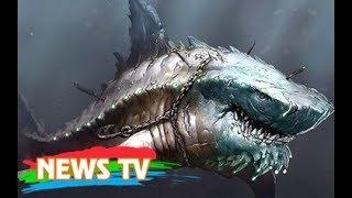 Top 10 loài cá mập lớn nhất từng tồn tại
