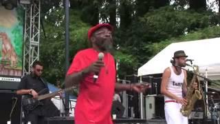 Download Lagu Clinton Fearon - Reggae on the River (2011) Gratis STAFABAND