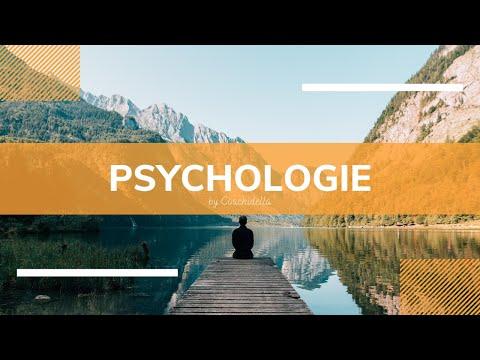 Soziale Unterstützung im Beruf | Coachidella Psychologie
