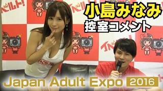 Minami Kojima backstage interview at Japan Adult Expo 2016