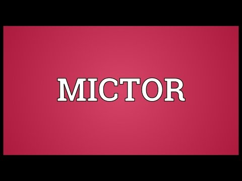 Header of mictor