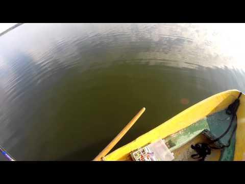 рыбалка сенеж запрет