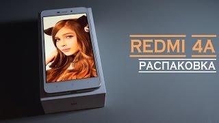 Xiaomi Redmi 4A. GOLD. Ламповый и няшный смартфон.