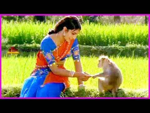 Punnami Nagu - Telugu Full Length Movie - Part - 8 - Chiranjeevi,rathi,narasimha Raju video