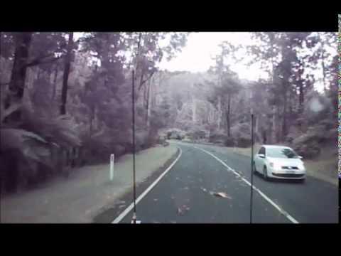 恐怖!暴風で次々と倒れる木々!!高速道路を走る車が捉えた衝撃映像