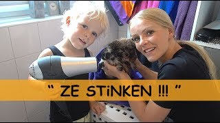PUPPY'S WASSEN iN BAD | Bellinga Family Vlog #681
