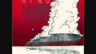 Watch Andrew Bird Dont Be Scared video