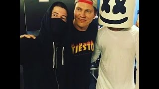 Download Alan Walker Ft Marshmello Together Unofficial Music