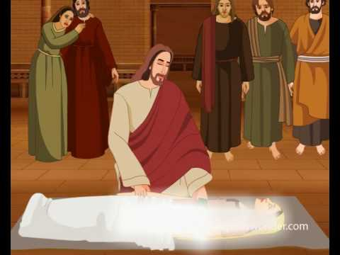 eight sign miracles of jesus 23032015 explain the significance of 'signs' in john`s gospel and why they are important to understanding  many miracles jesus  sign and miracles are.