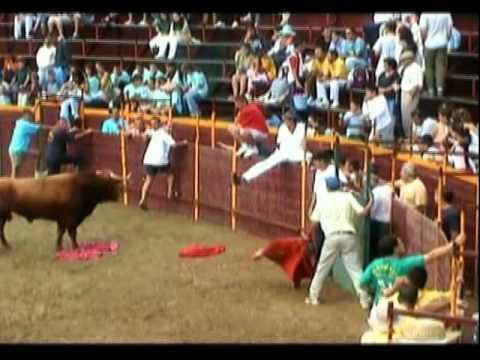 """Talavan-Fiestas 2005 Toros Confirmacion-Cojida """"NIÑO DE LA JUNTANA"""""""