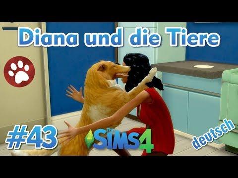 Sims 4 - Diana und die Tiere #43 - Abschied von den Welpen