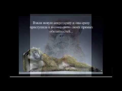 Планета Обезьян.wmv