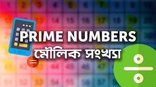 04. Prime Numbers by Ayman Sadiq [JSC | SSC | HSC | Admission]