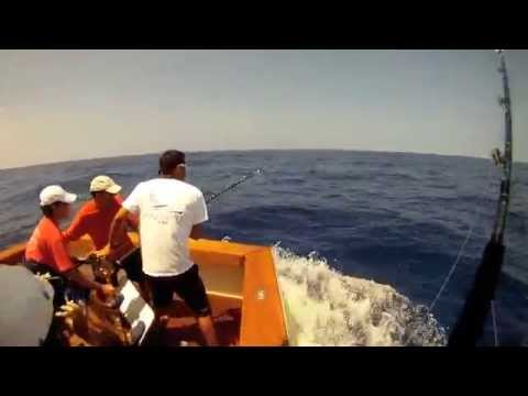 MARLIN FISHING KONA