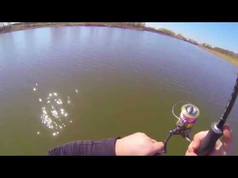 ловля судака весной на припяти