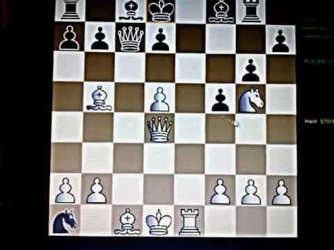 BEOGRADSKI Gambit - Igra četiri skakača #10 šah i mat