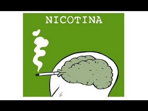 Las estampas las bromas deja a fumar