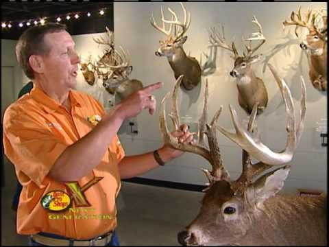 Bass Pro Shops Next Gen WOW Factor Deer Antlers Video