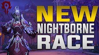 Nightborne | Customization, Heritage Armor, Racials, Voices & Race Mount |  Horde Allied Race