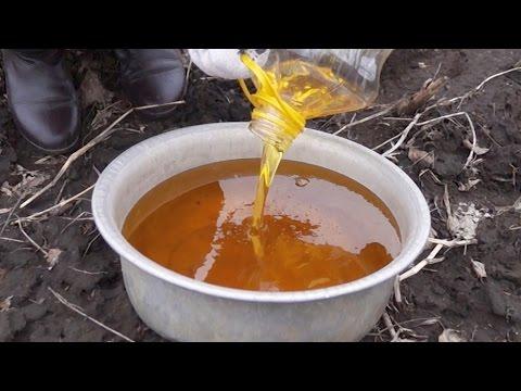 Видео как проверить масло на воду