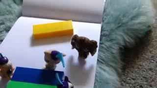 Unicorn famliy