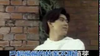 林志穎    十七歲的雨季 (1992)
