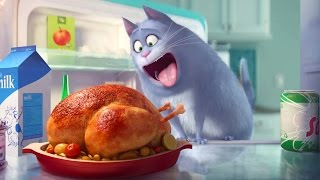 The Secret Life of Pets - Official Teaser Trailer