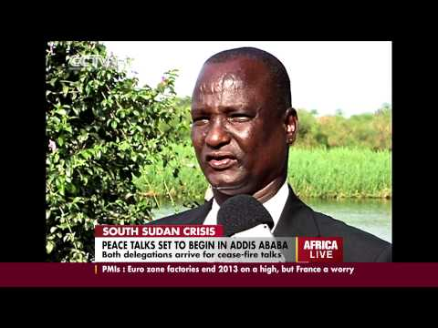 South Sudan delegations arrive for talks in Addis Ababa