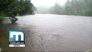 TN Will Be Asked To Take Water From Mullaperiyar: CM  Mathrubhumi News