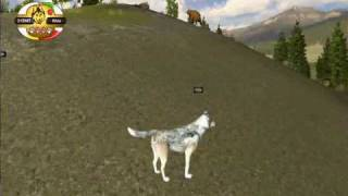 Never P At A Wolf Encounter ~ WQ: SC Glitch