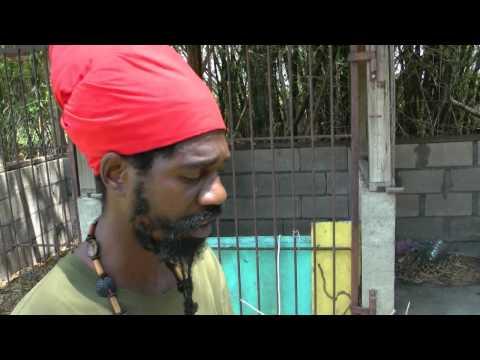 Jamaica 2013 Rasta Vapor Chalice