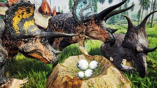 DEVORARAM O FILHOTE! Super Manada de Triceratops + Ninhada, Defendendo Território   The Isle   PT/BR