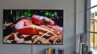 Sony A8F Complete Walkthrough
