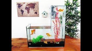 How to Make an Aquarium at Home