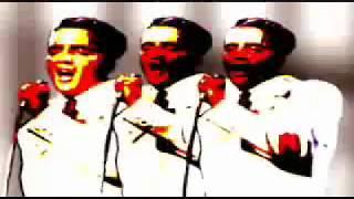 Watch U2 Elvis Ate America video