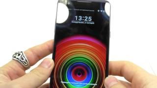Видео обзор смартфона LG K220ds X Power 16 Гб черный