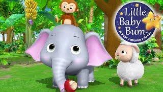 Animals Feeding Song   Nursery Rhymes   Original Kids Songs By LittleBabyBum!