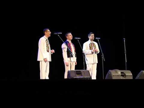 Формация Светоглас - Омиле ми, Ягодо (live)