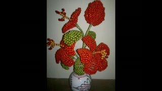 পুঁতির গাছ ও ফুল । Bead tree and flower .