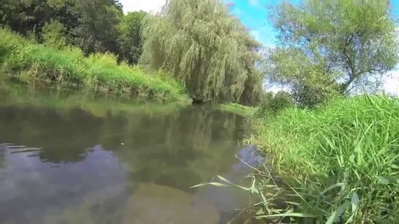 Fly fishing spruce creek pa youtube for Pa out of state fishing license